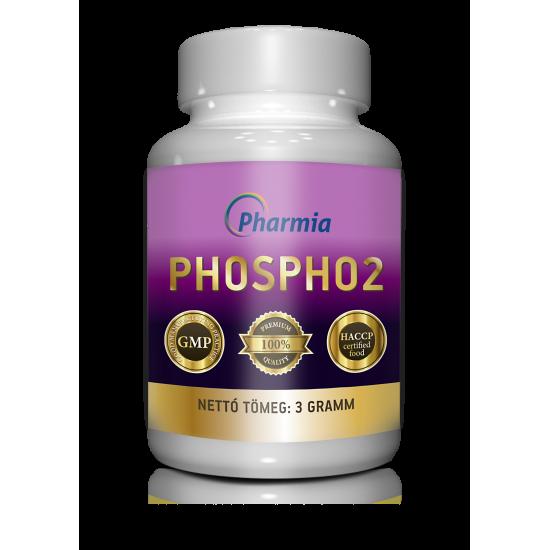 Phospho2 - Az agy bajnoka